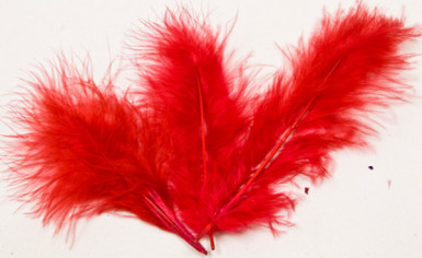 20 Plumes de décoration rouges 5,5 cm