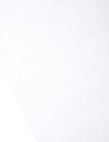 Chemin de table organza brillant blanc 28 cm x 5 m-1