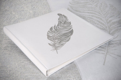 Livre D'or plume Argent-1