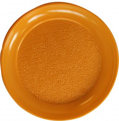 12 Assiettes mangue en plastique 25 cm