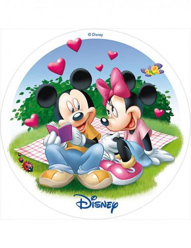 Disque azyme 20 cm Mickey et Minnie™