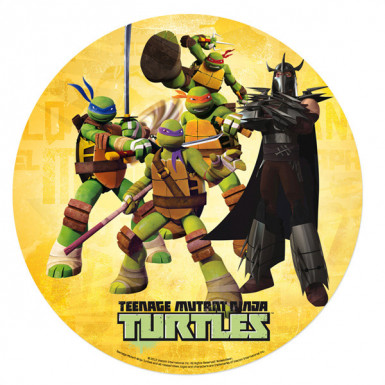 Disque azyme 20 cm Tortues Ninja & Shredder™