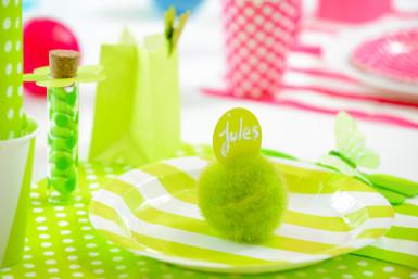 10 Assiettes à rayures vertes et blanches en carton 23 cm-1