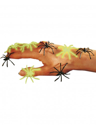 Fausses araignées noires et phosphorescentes Halloween