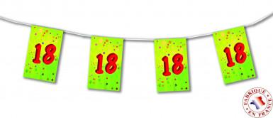 Guirlande fanions papier 18 ans 4m