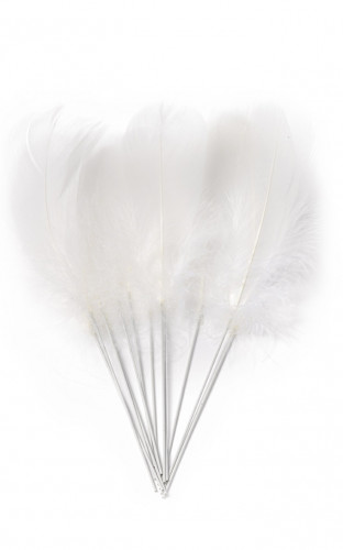 12 Plumes blanches sur pic