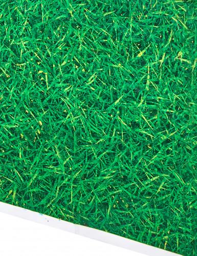 Nappe verte en plastique effet herbe 137 x 274 cm-1