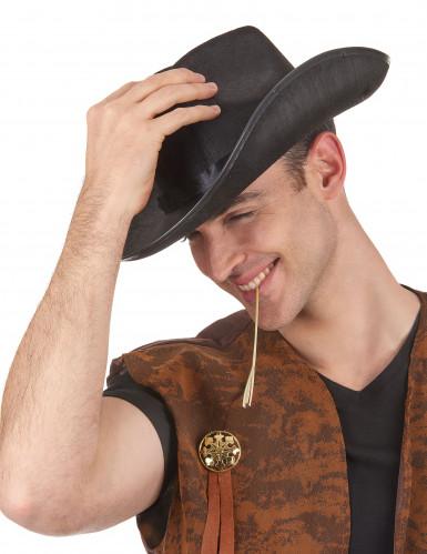 Chapeau cowboy Adulte -1