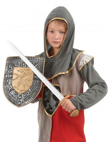 Kit épée et bouclier en plastique pour Enfant-2