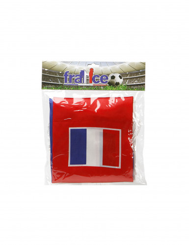 Echarpe supporter France-1