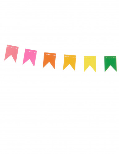 Guirlande mini fanions multicolores 2 m-1