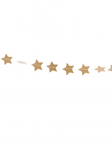 Guirlande mini étoiles dorées pailletées 3 m-1