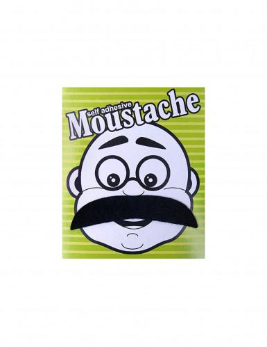 Moustache casanova-1