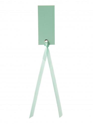 12 Marque-places rectangle avec ruban menthe 3 x 7 cm