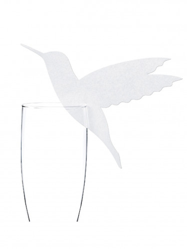 10 Marque-verres en carton colibri 13 x 10 cm