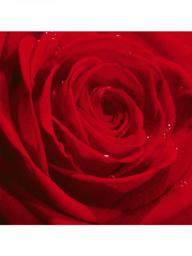 20 Serviettes en papier rose rouge 33 x 33 cm