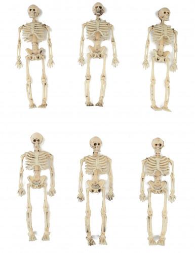 6 décorations squelettes 15 cm