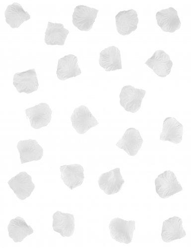 288 Pétales blancs-1