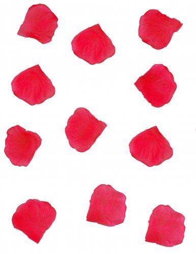 288 Pétales rouges
