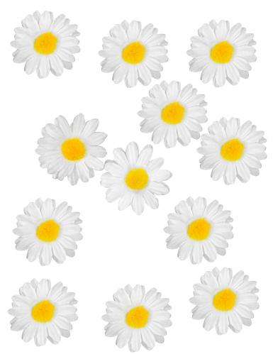 12 Décorations de table Marguerite 3,5 cm