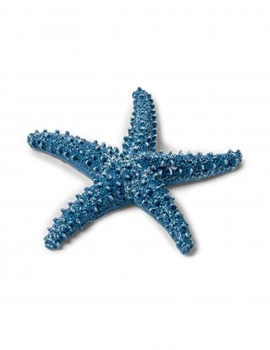 Grande étoile de mer bleu marine 6,5 cm
