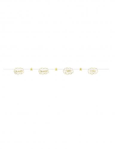 Guirlande carton Twinkle Twinkle Little Star dorée et blanche 2,13 m-1