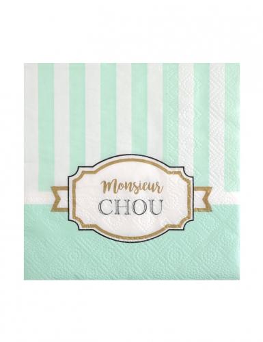 20 Petites serviettes en papier Baby shower menthe 25 x 25 cm