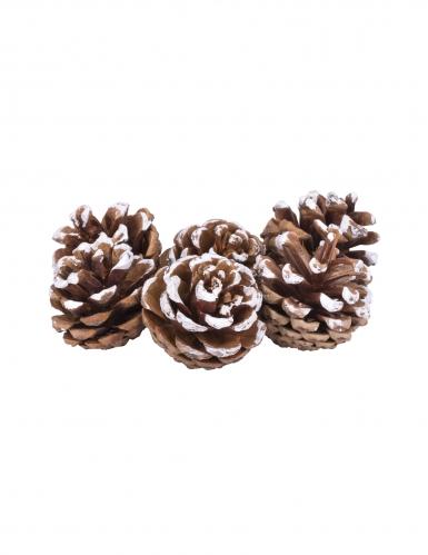 6 Pommes de pin enneigées 4 cm