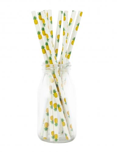 10 Pailles en carton ananas classe 20 cm