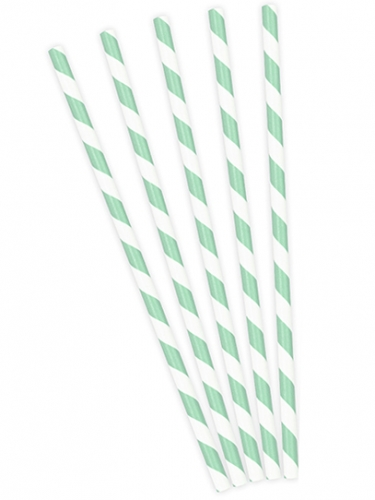 10 Pailles en carton rayées blanches et menthe 19,5 cm