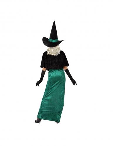 Déguisement sorcière de l'ouest verte femme-2