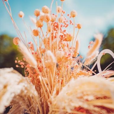 Bouquet de gypsophiles séchées rose 25 g - 80 cm-1