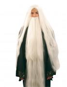 Perruque et barbe de magicien homme