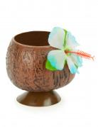 Coupe Hawaï noix de coco tropicale