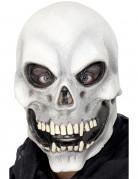 Masque squelette adulte Halloween