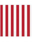 16 Serviettes en papier rayées rouges et blanches 33 x 33 cm