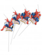 6 Pailles Médaillons Spiderman Web-Warriors™