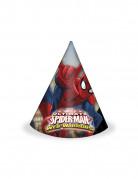 6 Chapeaux Spiderman ™
