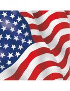 16 Serviettes en papier drapeau USA