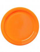 30 Assiettes mandarine 22 cm