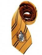 Réplique cravate Poufsouffle - Harry Potter™
