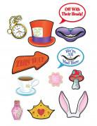 Kit photobooth 12 pièces Alice au pays imaginaire