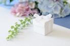10 Boîtes en carton blanches avec ruban 5,2 x 5,2 cm