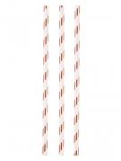 12 Pailles en carton blanches et cuivrées 19 cm
