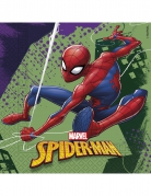 20 Serviettes en papier 33 x 33 cm Spiderman™