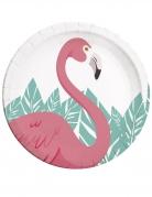 8 Assiettes en carton Flamingo 23 cm