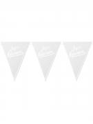 Guirlande à fanions blancs et argents Joyeux Anniversaire 3.60m