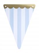Guirlande 5 fanions Circus ciel festons dorés 15 x 21 cm