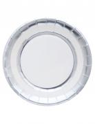 10 Assiettes en carton argenté métallisé 23 cm