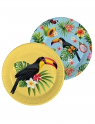 8 Assiettes en carton Toucan jaune et bleu 23 cm